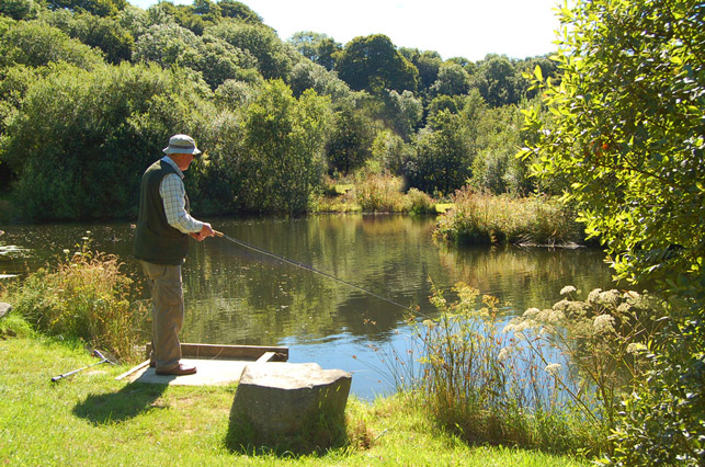 fly fishing tavistock