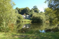 trout-fishing-lake-tavistock-devon-11