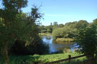 trout-fishing-lake-tavistock-devon-12