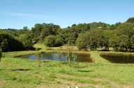 trout-fishing-lake-tavistock-devon-15