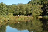trout-fishing-lake-tavistock-devon-3
