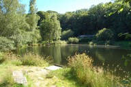 trout-fishing-lake-tavistock-devon-4