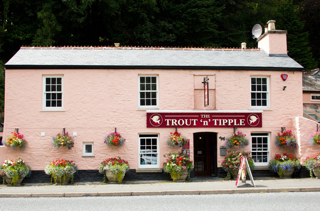 trout-n-tipple-tavistock-outside